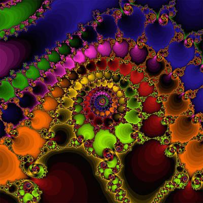 Photograph - Rainbow Shell by Ronda Broatch