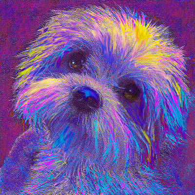 Puppy Digital Art - Rainbow Shih Tzu by Jane Schnetlage