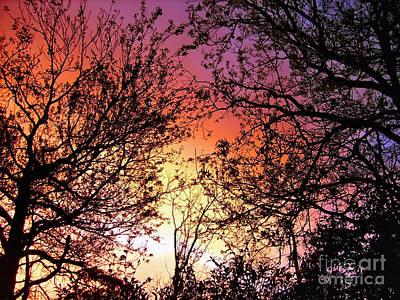 Target Threshold Watercolor - Rainbow Sunset by Kaye Menner