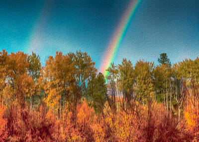 Photograph - Rainbow Surprise by Omaste Witkowski
