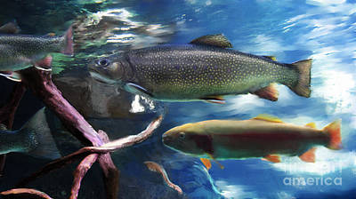Digital Art - Rainbow Trout by Lisa Redfern