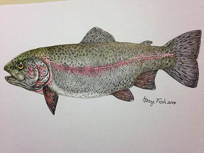 Rainbow Trout Art Print by Mary Fish