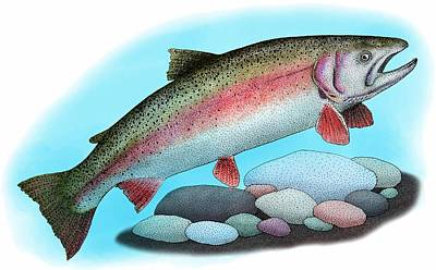 Photograph - Rainbow Trout by Roger Hall