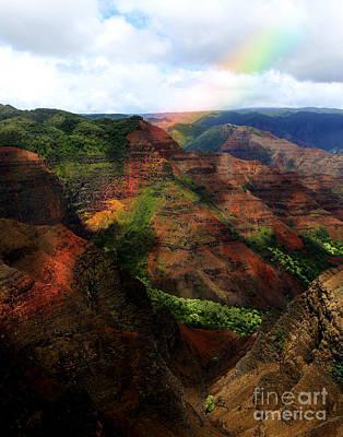 Photograph - Rainbowland by Deena Otterstetter