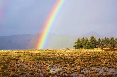 Photograph - Rainbow's End by Angi Parks