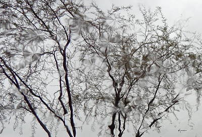 Photograph - Raindrops by Kume Bryant