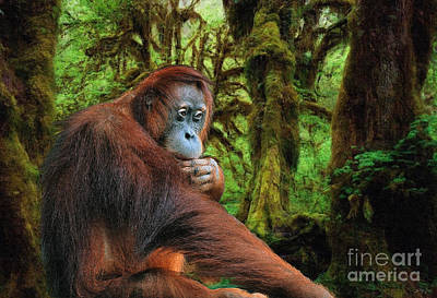 Orangutan Digital Art - Rainforest Thoughts by Skye Ryan-Evans