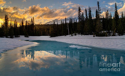Thawing Photograph - Rainier Fire And Ice by Mike Reid