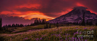 Photograph - Rainier Fire Mountain Panorama by Mike Reid
