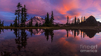 Photograph - Rainier Soaring Sunrise Reflection by Mike Reid