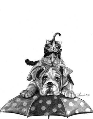 Pencil Drawings Drawing - Raining Cats And A Dog by J Ferwerda