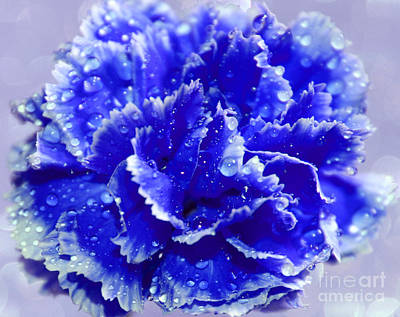 Blue Flowers Photograph - Rainy Day Blues by Krissy Katsimbras