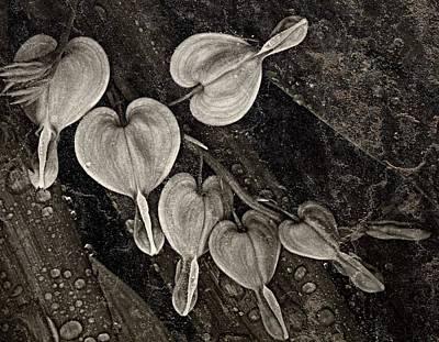 Rainy Day Hearts Art Print