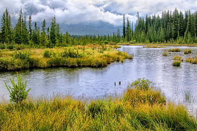 Photograph - Rainy Day In The Rockies by Carolyn Derstine