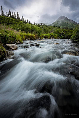 Photograph - Mountain Stream In Rain by Tim Newton