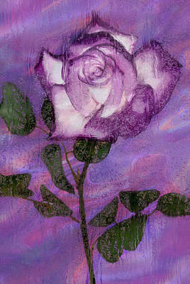 Rosaceae Painting - Rainy Day Rose by Jack Zulli