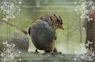 Photograph - Rainy Day Sparrow With Verse by Debbie Portwood