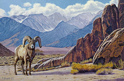 Ram Painting - Ram-eastern Sierra by Paul Krapf