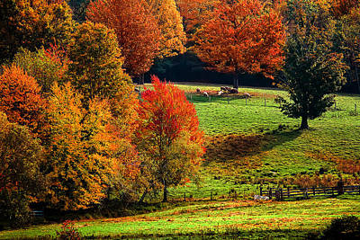 Photograph - Ramblin' Fall by Robert Clifford