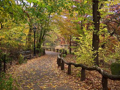 Photograph - Rambling Along An Autumn Path by Cornelis Verwaal