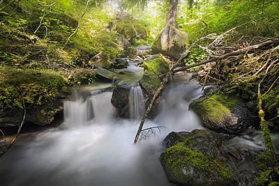 Sun Photograph - Ramona Creek by David Gn