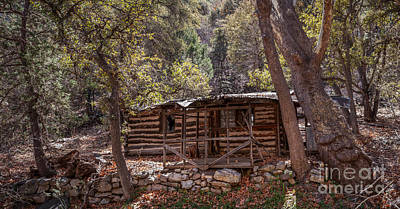 Ramsey Canyon Photograph - Ramsey Canyon Log Cabin 2 by Al Andersen