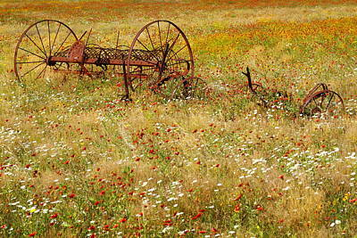 Flower Photograph - Ranch And Wildflowers And Old Implement 2am-110546 by Andrew McInnes
