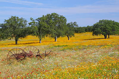 Flower Photograph - Ranch And Wildflowers And Old Implement 2am-110556 by Andrew McInnes
