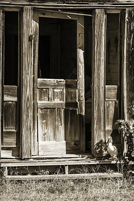 Photograph - Ranch Cabin Old Door In Sepia 3007.01 by M K Miller