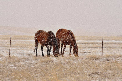 Ranch Horses In Snow Art Print by Kae Cheatham