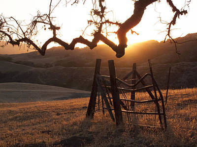 Photograph - Ranch Sunset by Derek Dean