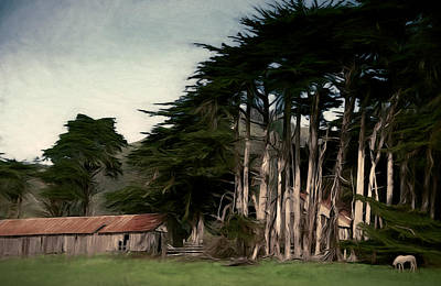 Ranch With Cypress Art Print by John K Woodruff
