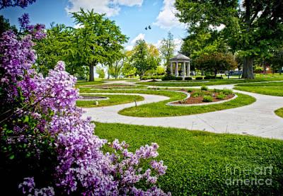 Rand Park Flower Garden Print by Ed Vinson