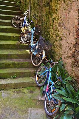 Photograph - Range Of Bikes by Dany Lison
