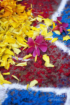 Indian Art Photograph - Rangoli Festival Art With Flower Petals by Tim Gainey