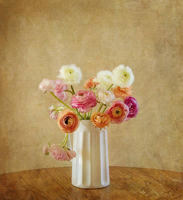 Kim Photograph - Ranunculus Flower Still Life by Kim Hojnacki