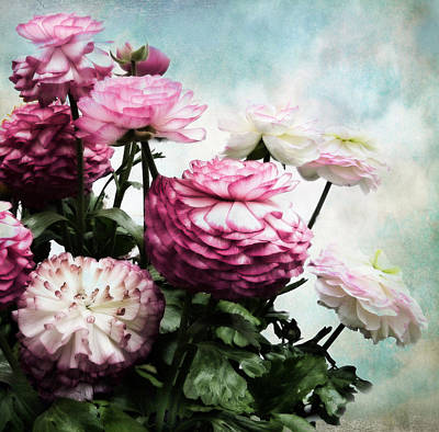 Floral Digital Art Digital Art Digital Art - Ranunculus In Bloom by Jessica Jenney