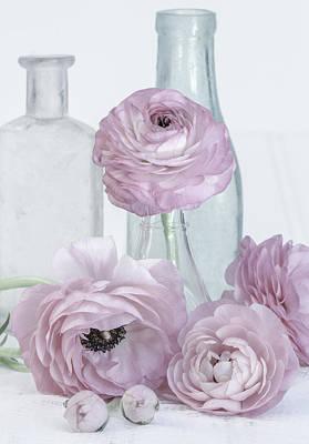 Photograph - Ranunculus by Kim Swanson