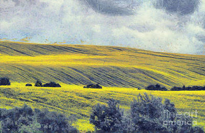 Long Exposure Painting - Rape Field Paint by Odon Czintos