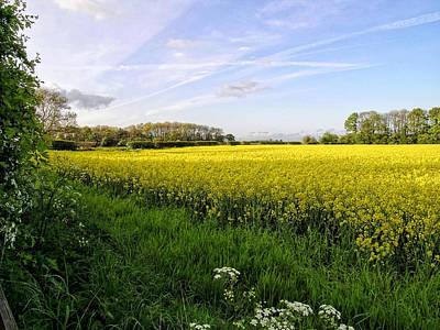 Thomas Kinkade - Rapeseed Field in Shropshire by Paul Williams