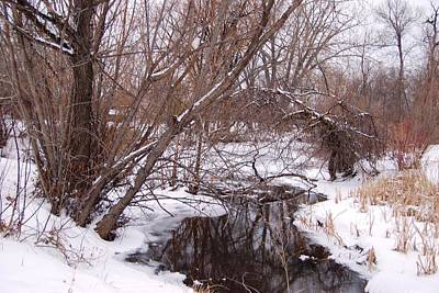 Photograph - Rapid Creek In Snow by Dakota Light Photography By Dakota