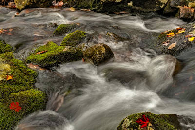 Photograph - Rapid Stream by Susan Candelario