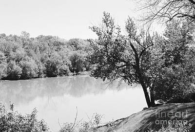 Photograph - Rappahannock Riverbank I by Anita Lewis