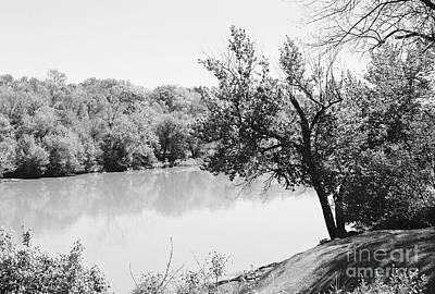 Photograph - Rappahannock Riverbank I by Anita Lewis