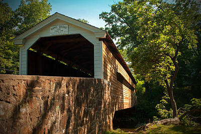Photograph - Rapps Covered Bridge by Michael Porchik