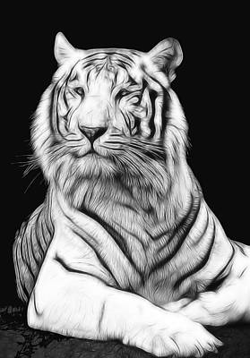 The Tiger Digital Art - White Tiger by Daniel Hagerman