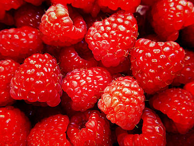 Photograph - Raspberries 3 by Laurie Tsemak