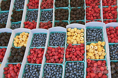 Photograph - Raspberries Blueberries And Blackberries Farmers Market Produce  by David Zanzinger