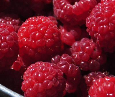 Raspberry Crave Original by Elena Hasnas