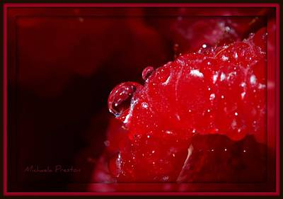 Photograph - Raspberry by Michaela Preston